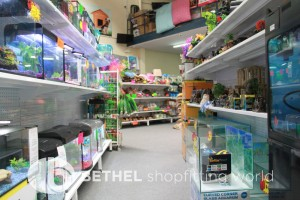 Pet Aquarium Shelving Shopfitting Racking v