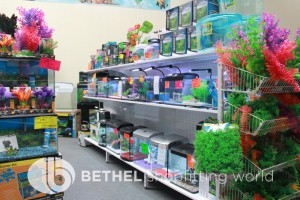 Pet Aquarium Shelving Shopfitting Racking r